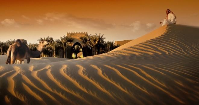 Kamel und Wüste